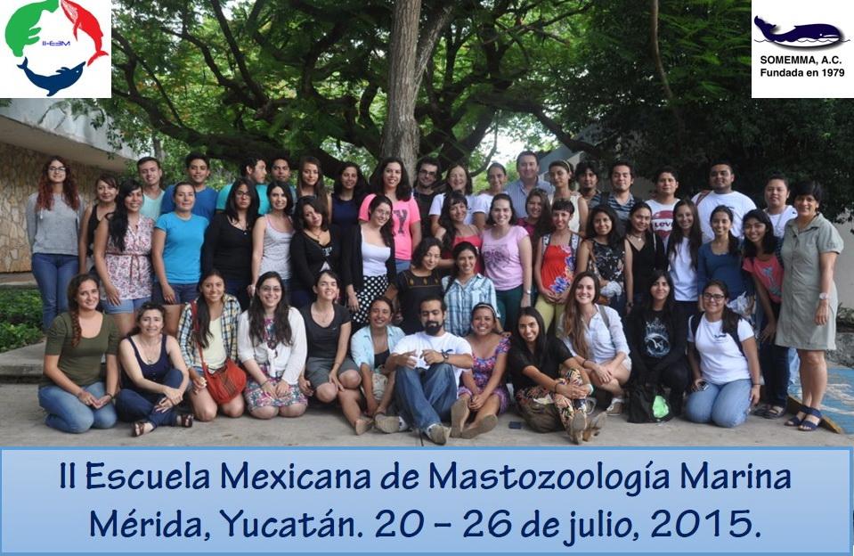 Grupo IIE3M SOMEMMA 2015 CCBA