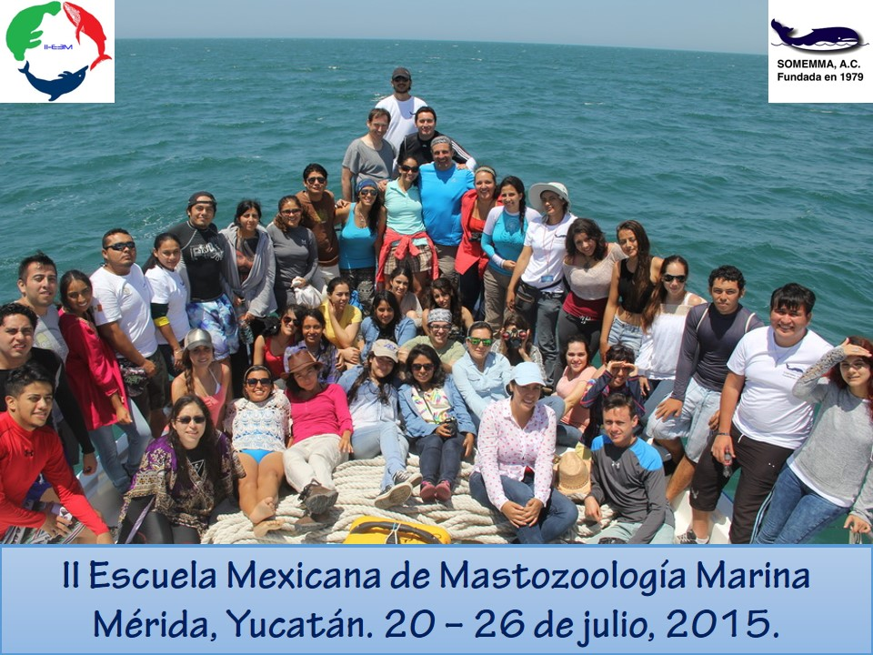Grupo IIE3M SOMEMMA 2015 Barco