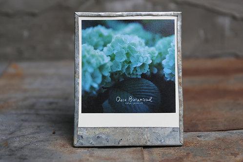 オリジナルブリキフォトフレーム フォトカード1枚付き 「アナベル」