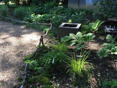 きれいごとだけではない、綺麗な庭の作り方