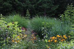 DB_front_garden