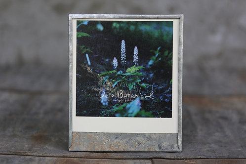 オリジナルブリキフォトフレーム フォトカード1枚付き 「ティアレラ」