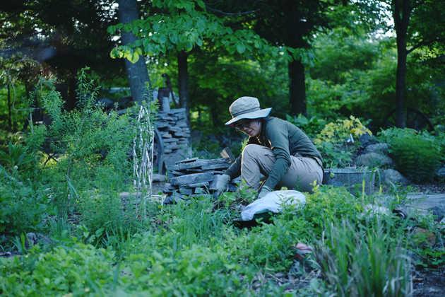 DB staff  gardener /  Akiyo Shimizu