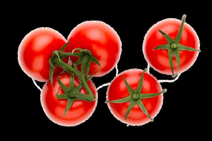 Supplier Jain Farm Fresh Foods Tomato