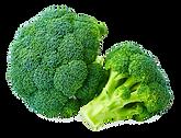supplier Broccoli Riced IQF