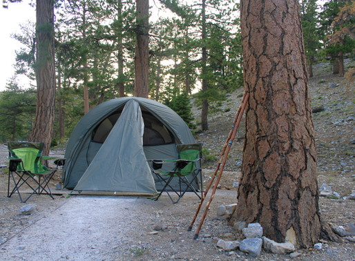 Mountain Camping in Vegas; McWilliams Campground