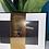Thumbnail: Écharpe coffret mixte
