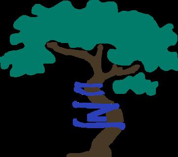 Orthopedic tree logo by JL Dobson