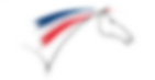 logo_ffe.png