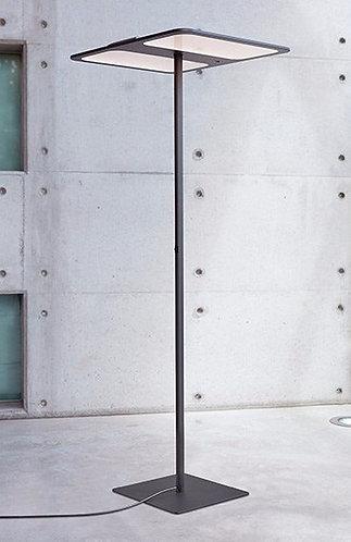 TOBIAS GRAU - XT-S ONE floor double