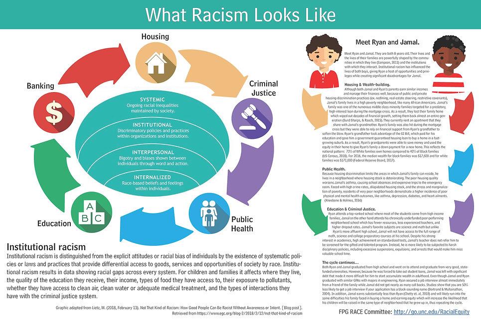 What Racism Looks Like.pdf.jpg