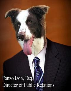 Fonzo CEO.jpg