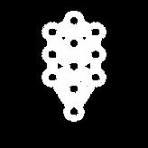 TreeOfLife-01.png
