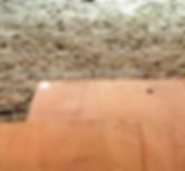 floor with insu.PNG