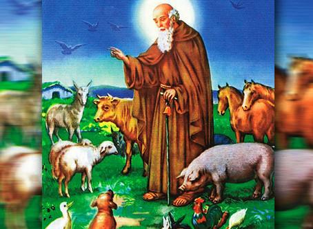 17 januari, naamdag van Sint Antonius