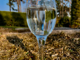 Bjørkesevje, en mineralrik drikk.