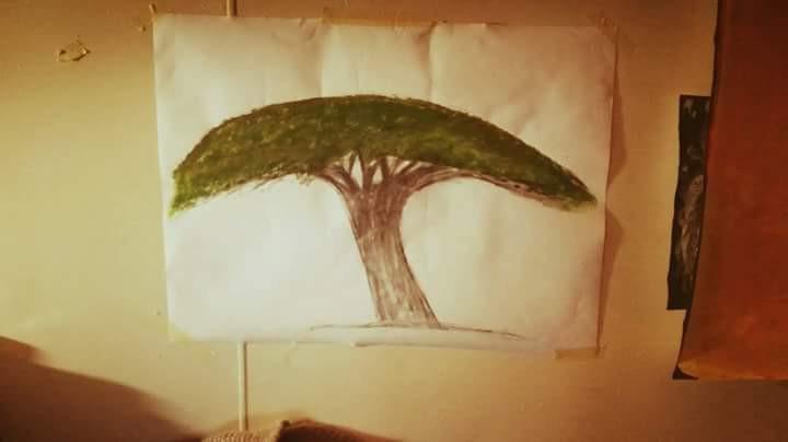 Safio maler det første treet hun satt under på flukt fra krigen i Somalia. Qura heter det på somalisk og Umbrella thorn på engelsk.