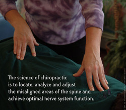 The-Science-of-Chiropractic