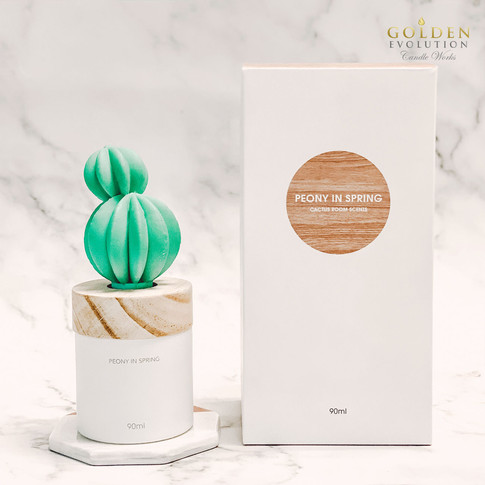 90ml Cactus Solid Air Freshener - PEONY IN SPRING