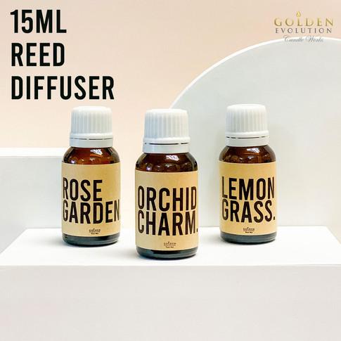 Mini Reed Diffuser