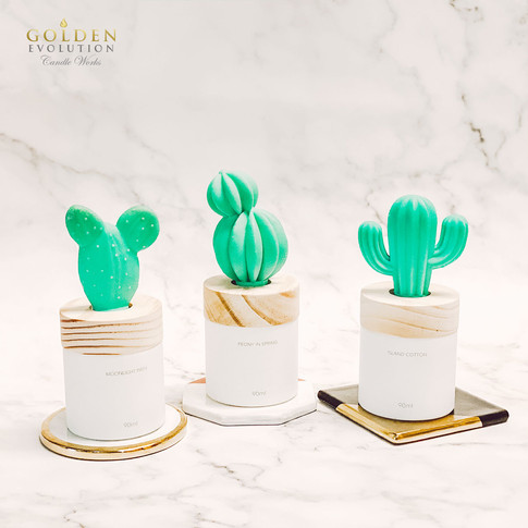 90ml Cactus Solid Air Freshener SET