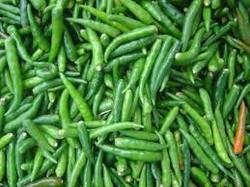 jalapeno peppers.jpeg