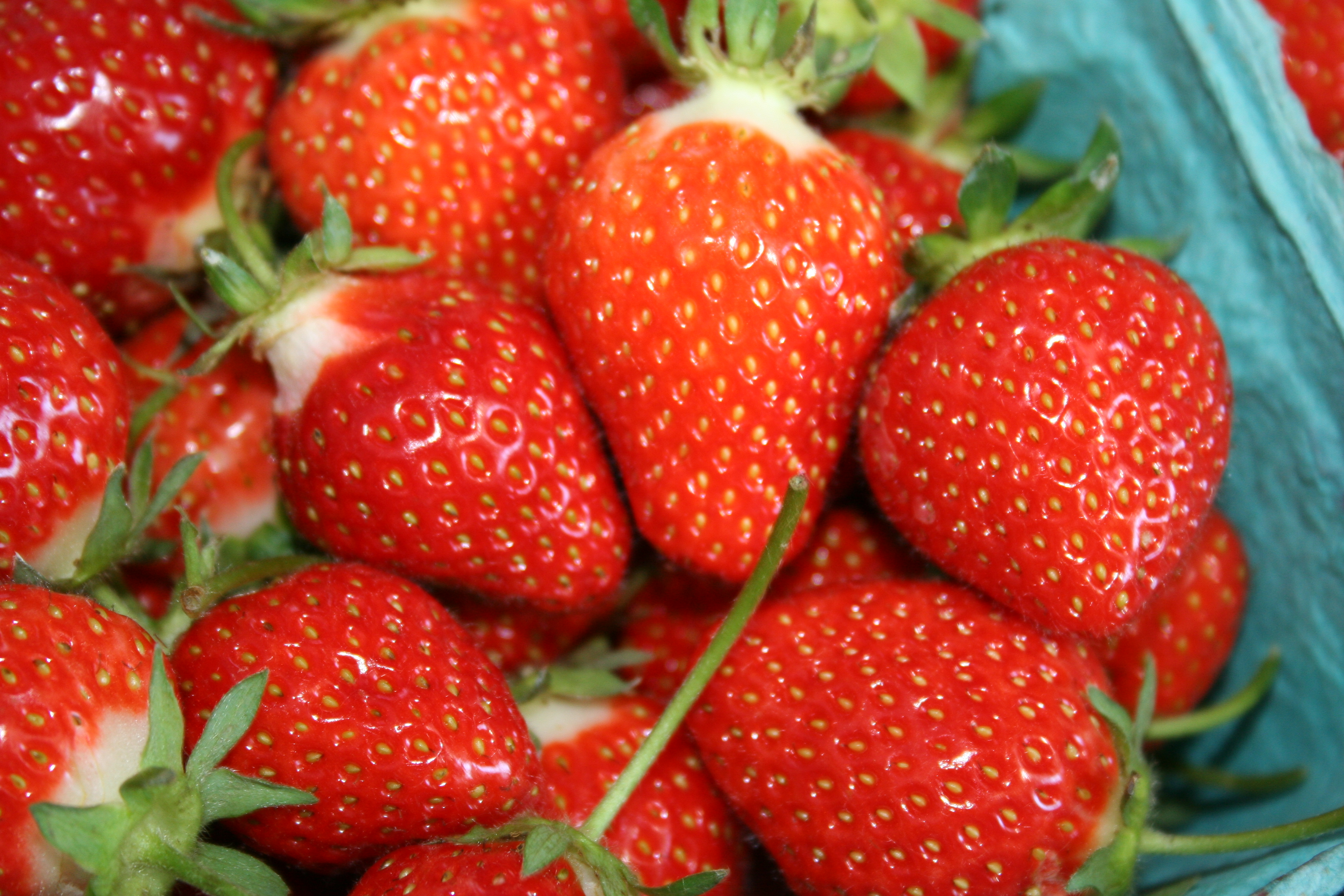 Fresh strawberries.jpg