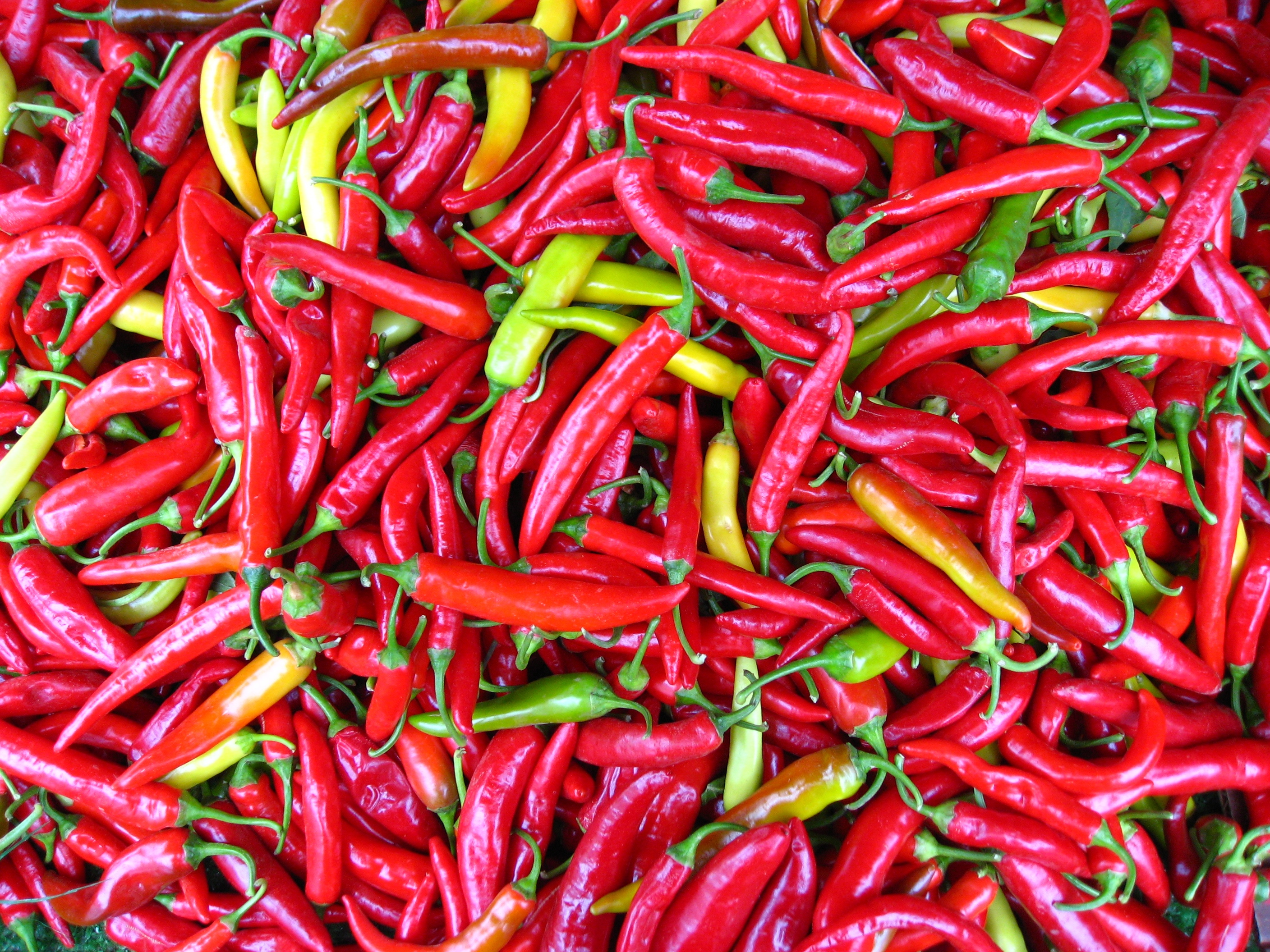 cayenne peppers.jpg