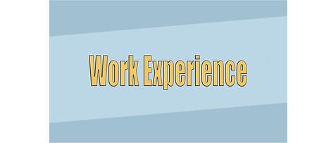 Workexperience copy.jpg