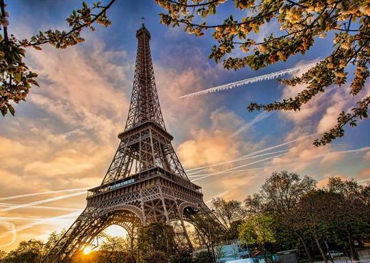 טסתי עד אליו לפריז