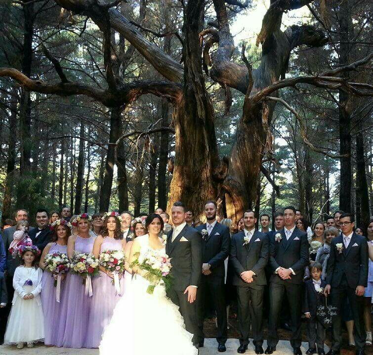 Flowers Of Envy Kuitpo Wedding