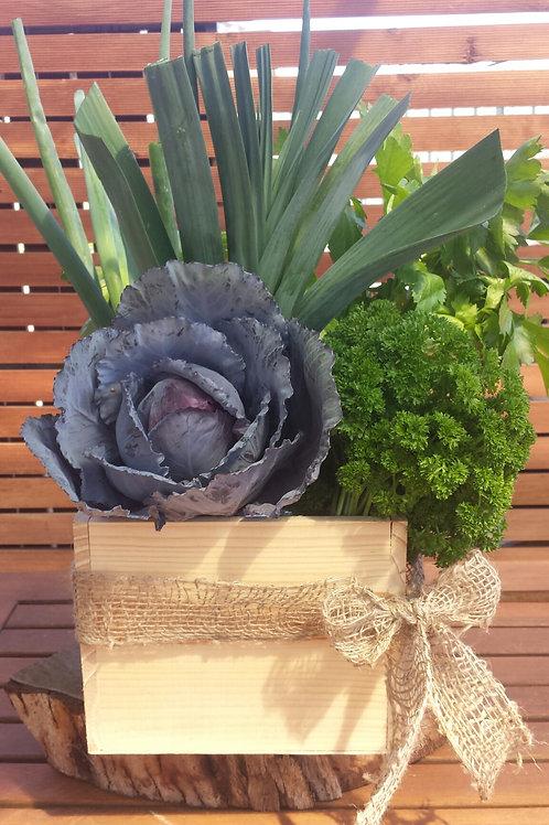 Vegetable/Salad/Herb or Fruit Boxes