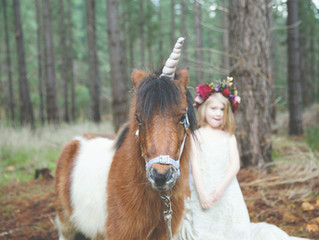 Kuitpo Forest Styled Shoot (Dream Wedding)