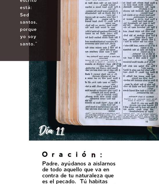 DÍA 11