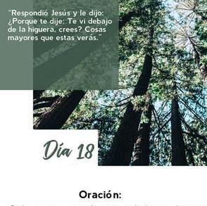 DÍA 18