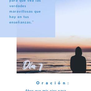 DÍA 7