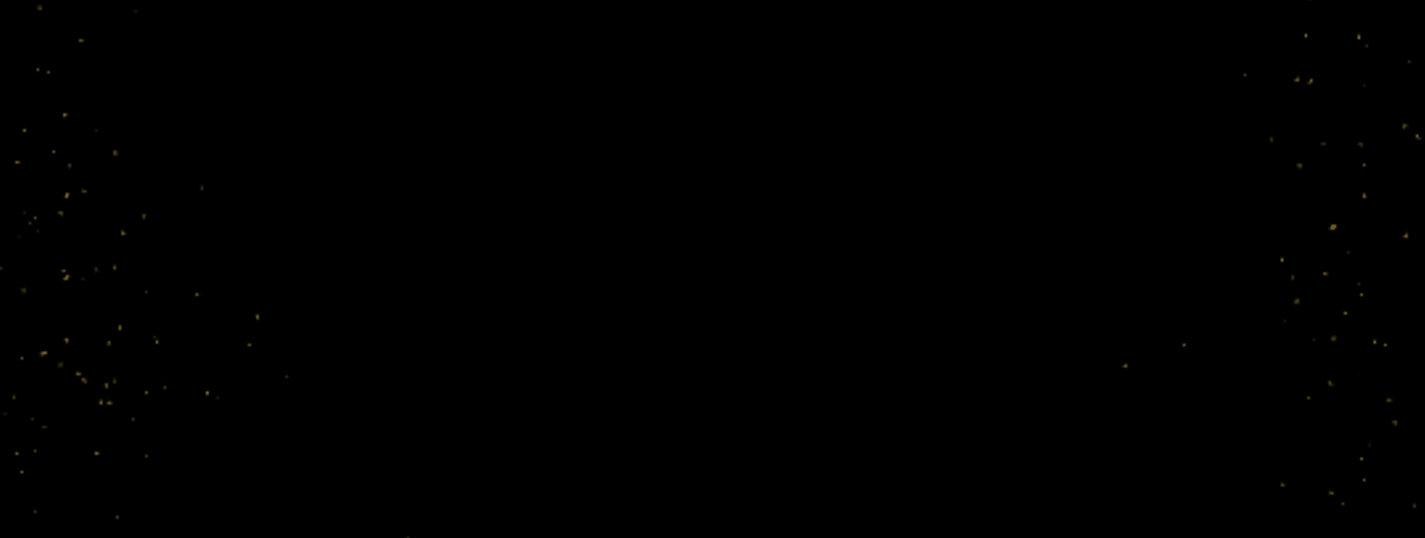 HN - LP SINOPSIS.jpg
