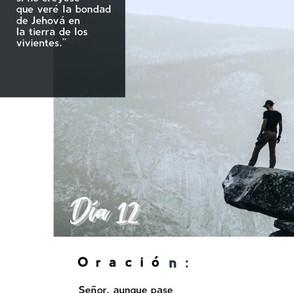 DÍA 12