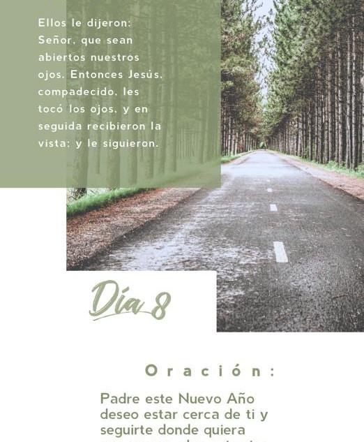 DÍA 8