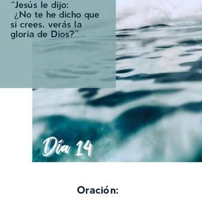 DÍA 14
