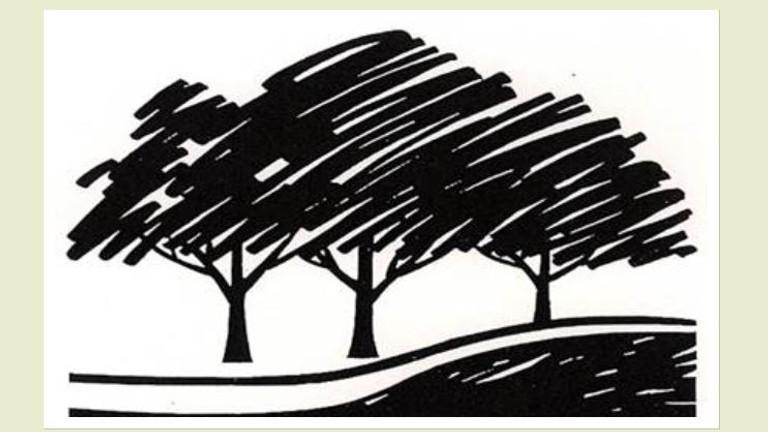 Landscape Design School Course 3