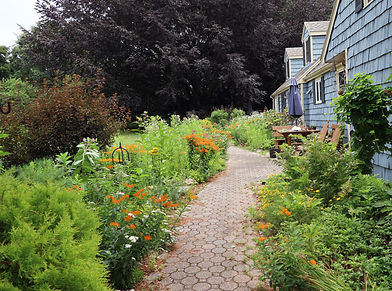 Kathy Connolly front path.JPG