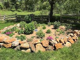 butterfly garden.jpg