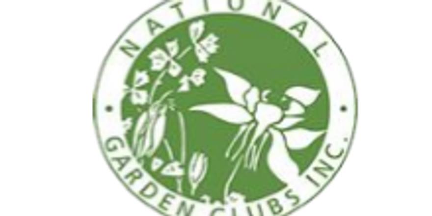 Environmental School ~ VIRTUALLY