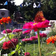 Town Common Veteran's Memorial Garden