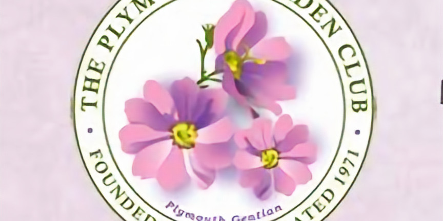 Plymouth Garden Club Books and Blossoms ~ Chapter 3
