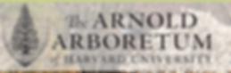 Capture Arnold Arboretum.PNG