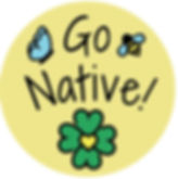 Capture Go Native.JPG