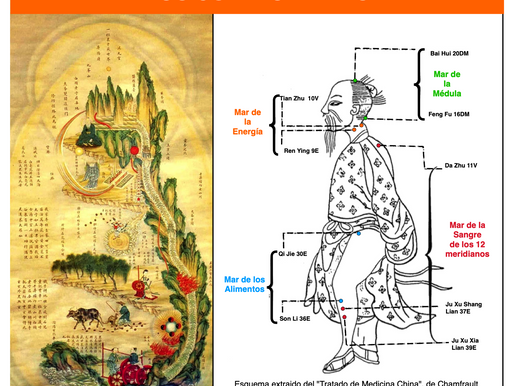 Medicina Tradicional China: Los Cuatro Mares