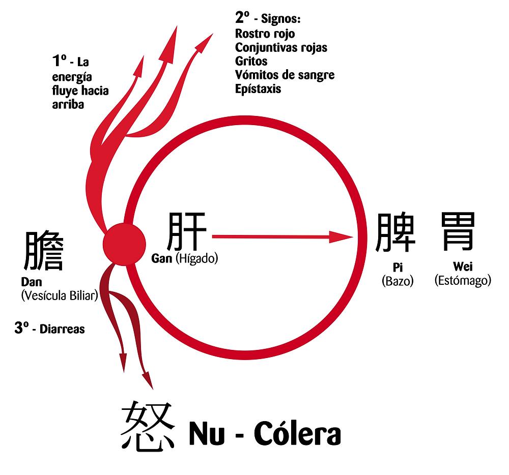 Movimiento energético de la cólera